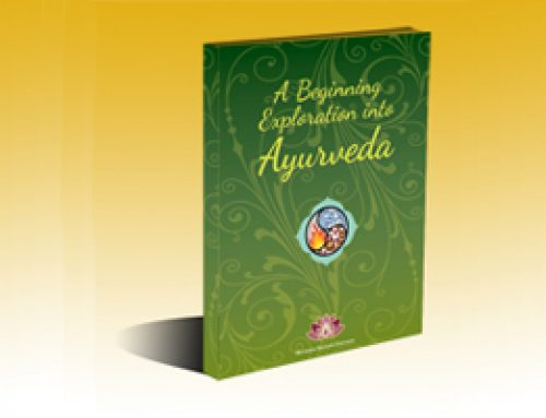 eBook: A Beginning Exploration into Ayurveda