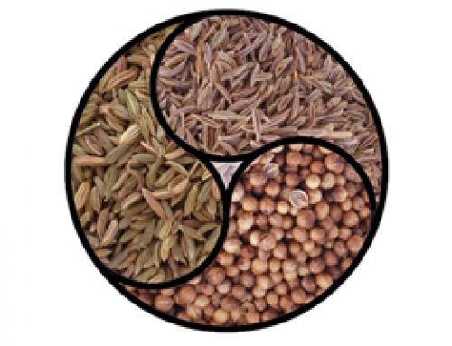 Spices for the Doshas