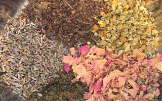 Ayurvedic Herbalism | | Ayurvedic Health Center & Wellness