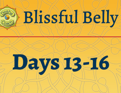 What happens Days 13-16 of the Blissful Belly program?